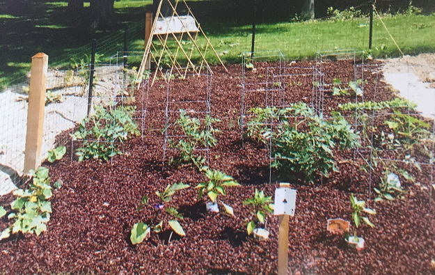 Southminster community garden has plots available